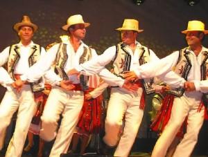 Braul stil de dans